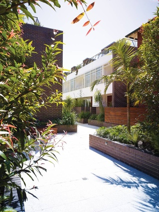 Randwick Townhouses, Sydney, NSW, 2009: Optimizing opportunities for light, air, space and views.