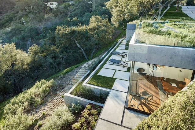 A green roof with herbs covers the house and stitches the form into the landscape.