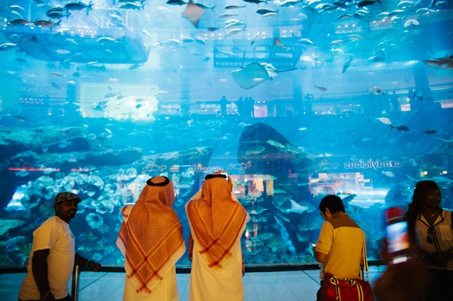 Aquarium inside the Dubai Mall captivates both locals and tourists alike.