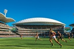 Pitch perfect: Adelaide Oval