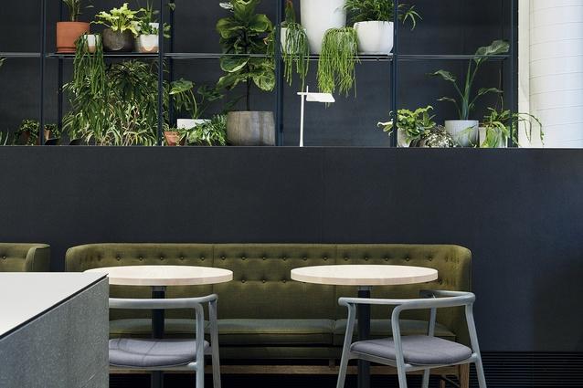 Best Cafe Design winner: Higher Ground, Melbourne by DesignOffice.