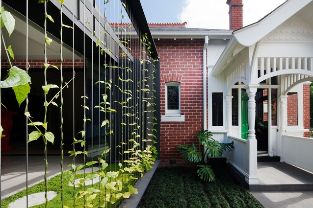 Shadow House - Shroud 'Breezeway' by Matt Gibson Architecture + Design and Ben Scott Garden Design.