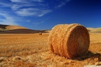 International Straw Building Conference