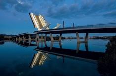 Bridge reigns supreme