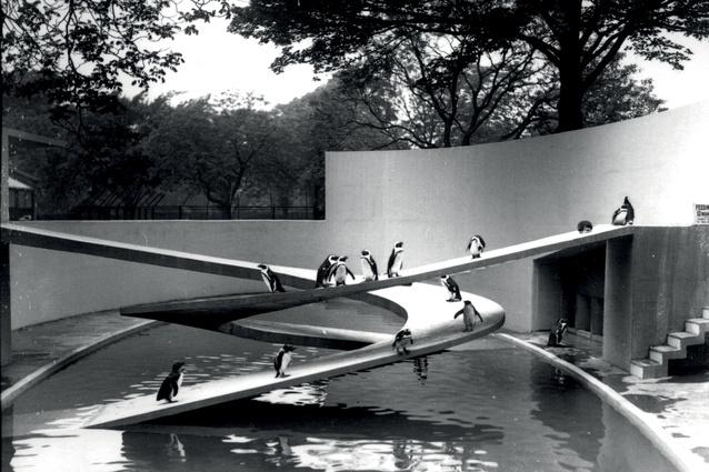Penguin Pool, London Zoo, 1934.