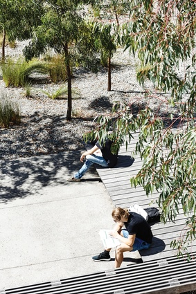 Benches offer places to study, rest or contemplate.
