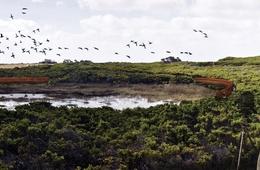 2016 National Landscape Architecture Awards: Award for Land Conservation
