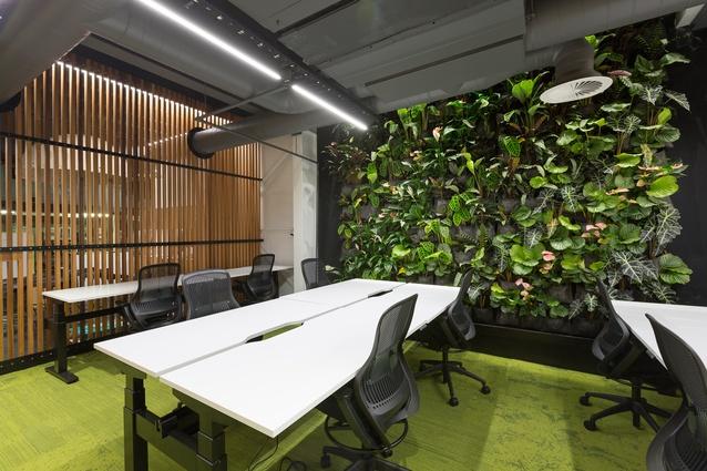 Interior Architecture winner: IVHQ Office by Boon Goldsmith Bhaskar Brebner Team Architects.