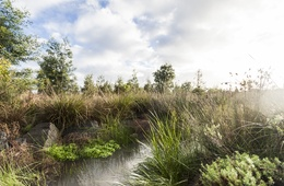 2016 National Landscape Architecture Awards: Award of Excellence for Land Conservation