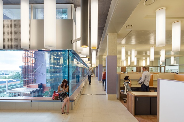Translational Research Institute by Wilson Architects + Donovan Hill Architects in Association.