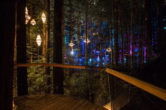 Redwoods Treewalk and David Trubridge Design have partnered to create a nocturnal tourism experience