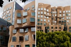 Gehry downunder