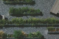 Artifice: Dermot Foley Landscape Architects