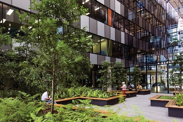 Brisbane ecosciences precinct and the university of for Courtyard landscaping brisbane