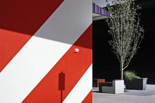 Dianna Wells's suburban geometries