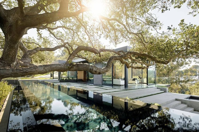 Oak Pass House is designed by Noah Walker. A 22m-long infinity pool glides under one of the largest oaks on the property.