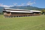 Bougainville mon amour