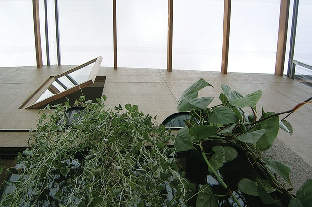 View of the front facade. Greenery flourishes in the enclosed verandah spaces.