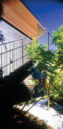 Carport Treehouse forms a bridge between street and garden on steep site.