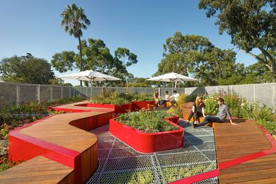 A University of Melbourne Study finds glancing at a green roof, even for a short time, can markedly boost concentration. The Burnley Living Roofs at the University of Melbourne by Hassell received a design award at the 2014 Victorian Architecture Awards.