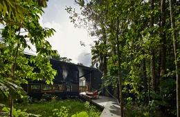 Rainforest journey: Cape Tribulation House