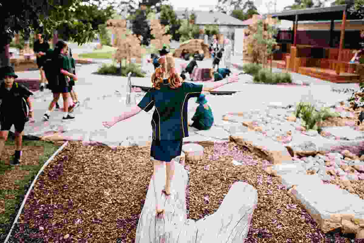 Paringa Park Primary School by Peter Semple Landscape Architect won the Award of Excellence in the Health and Education Landscape category.