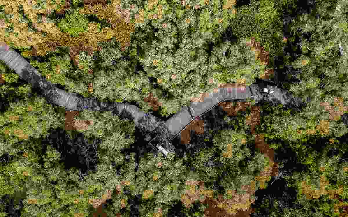 Maroochy Wetland Sanctuary by the Sunshine Coast Council.