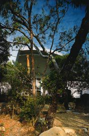 Cooktown Art Gallery and Interpretative Centre. The gallery entry, with canopy propped on spotted gum posts, seen through the lush growth of the Botanical Gardens. Image: Patrick Bingham-Hall