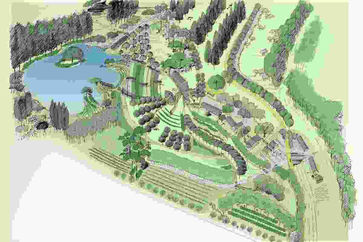 Aerial sketch of The Living Classroom entry showing intensive agriculture and aquaculture within an interpretative park.