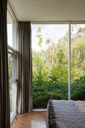 Cypress trees, black bamboo and other foliage afford privacy, obscuring the immediate suburban development.