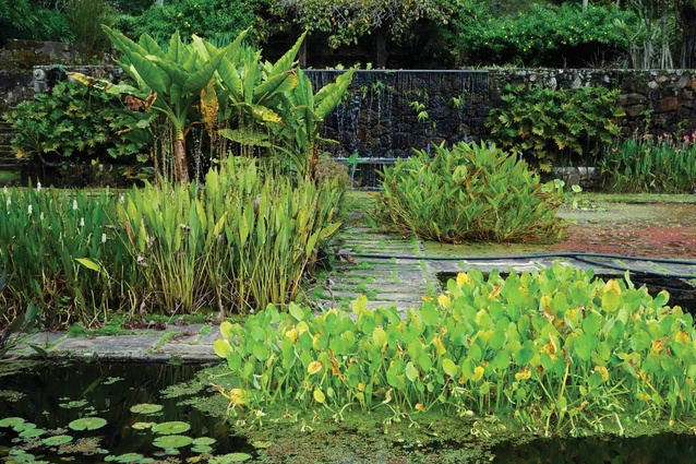 Fazenda Vargem Grande is an extensive garden in Brazil on the site of a former coffee plantation (1979–1990), designed by Roberto Burle Marx.