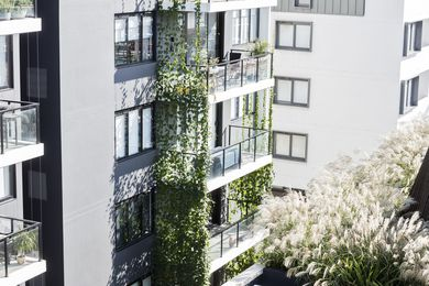 Eve Apartments by 360 Degrees Landscape Architects.