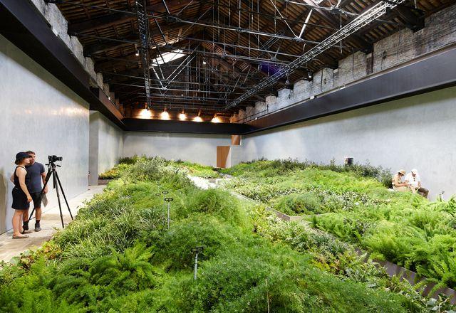 The Italian pavilion at the 2012 Venice Architecture Biennale.