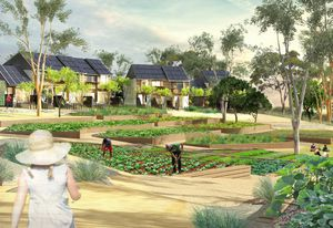 "The Paddock, an ""eco-village"" of 26 homes designed by Crosby Architects being built in Castlemaine in Victoria."