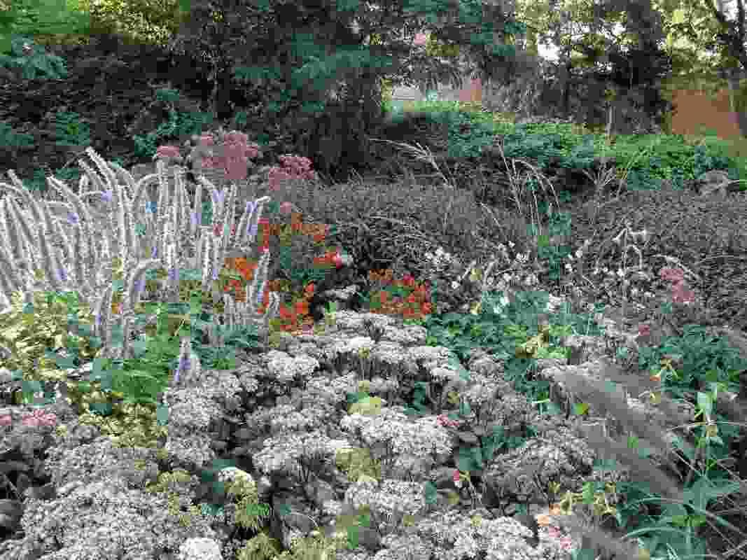 Il Giardino delle Vergini, 2010.