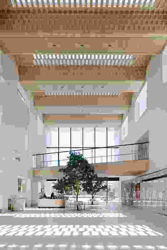 """The timber ceiling of the """"internal street"""" adopts the tessellated pattern seen on the external glazing."""