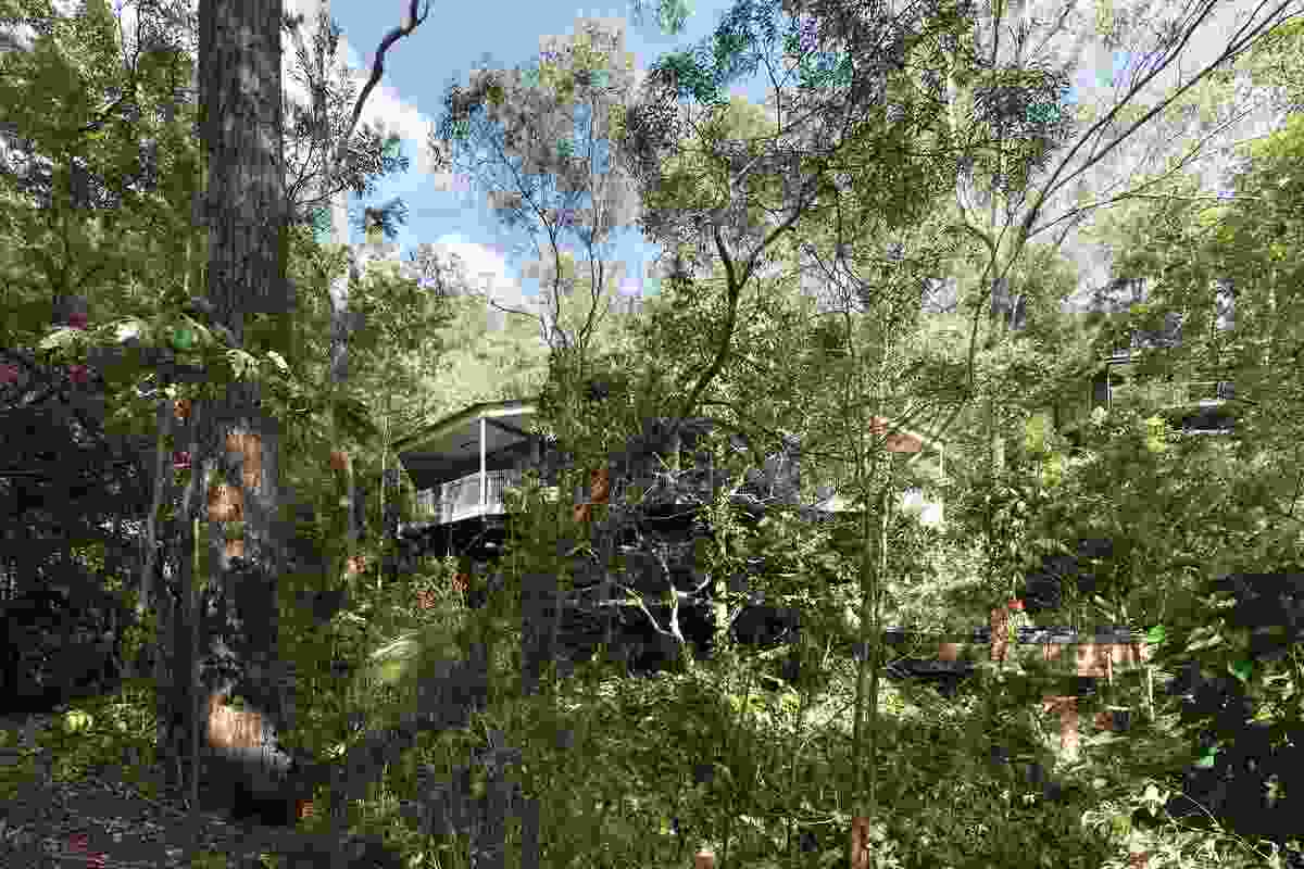 Surrounding vegetation helps to maintain a cool microclimate and provides privacy from river traffic and neighbours.