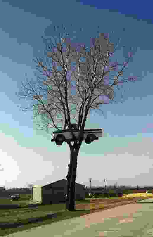 A truck inexplicably reassembled in a tree, photographed in Beloit, Wisconsin. Part of Public Phenomena by Temporary Services.