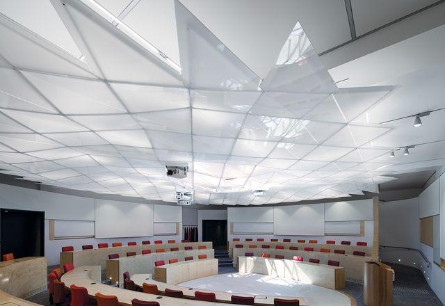 讲座剧院有一个有血轮计划,允许座椅和视线鼓励高水平的物理相互作用和视觉连接。