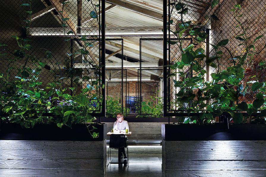 Transformer Fitzroy (Fitzroy, Victoria) by Breathe Architecture