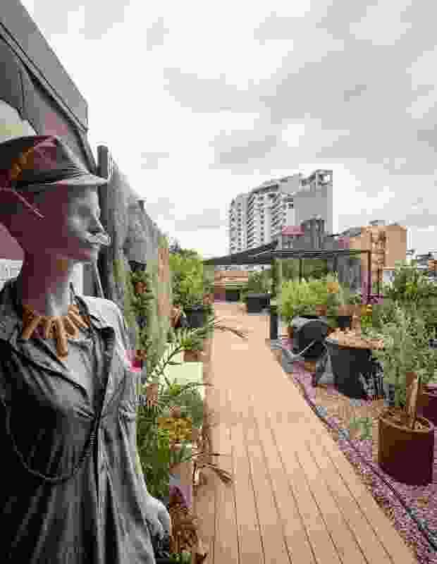 在屋顶花园中生长在路边咖啡馆中使用,并销往邻近的餐厅。