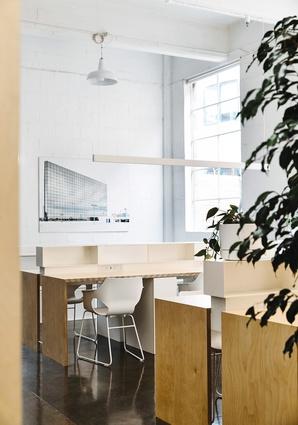 Full-height windows splash sunlight across two banks of birch desks.