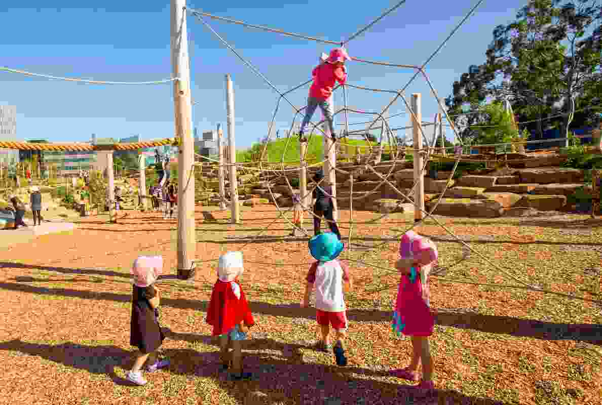 Consultation with children prior to the park's design revealed climbing trees were popular among all ages.