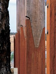 """Detail of the """"grafted"""" ironbark pergola posts, which extend into the landscape."""