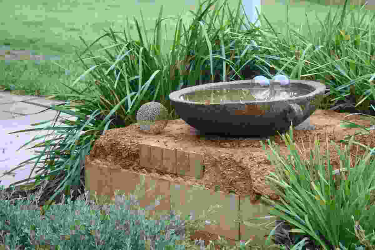 Water bowl sits on recycled bricks and earth plaster.