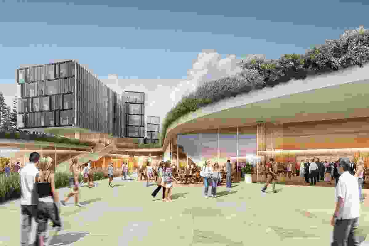 Architectus Consortium's proposed design for the new Harbord Diggers Club.