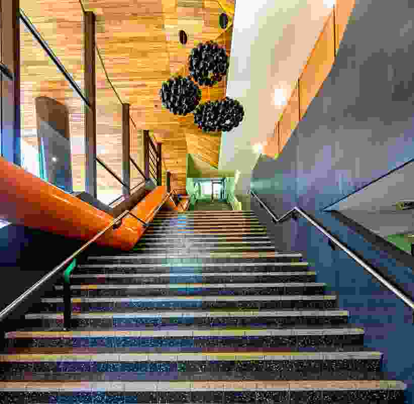"The central stair is a ""big gesture"" symbolizing a learning pathway."