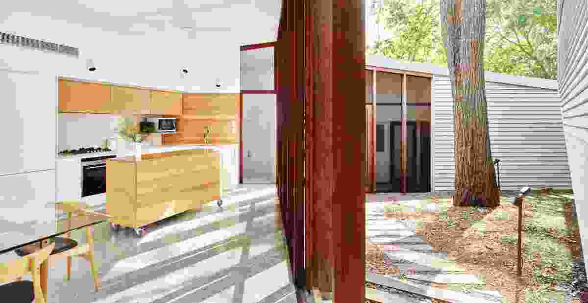 "The plan folds around a central ""naturalistic"" courtyard in response to existing trees and the proximity of neighbours."
