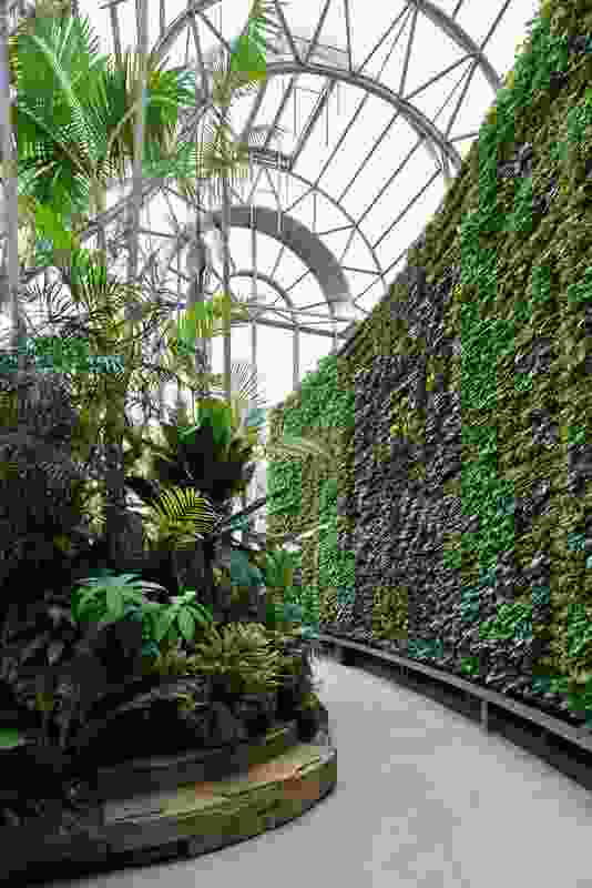 The new green wall is the largest in the Southern Hemisphere.