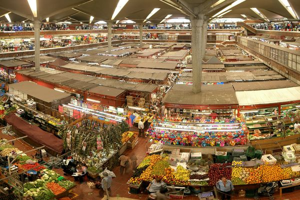 Mercado Libertad in Guadalajara, the largest indoor market of Latin America, designed by Mexican architect and Holocaust survivor Alejandro Zohn. The building will be discussed in the Tokyo talk with Marika Neustupny, director of NMBW Architecture Studio.